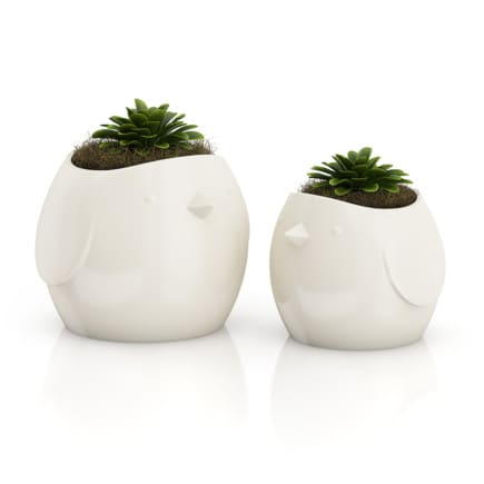 "Two Plants in ""Bird"" Pots"