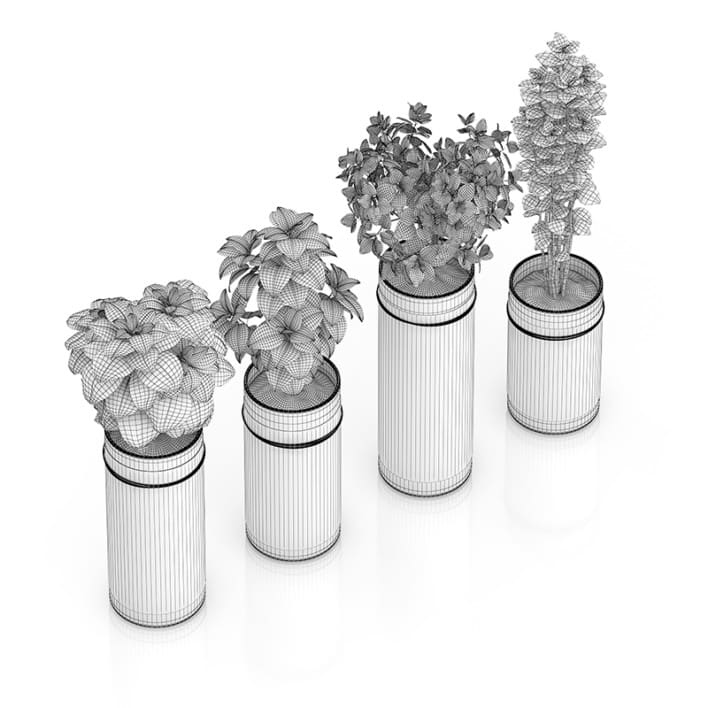 Four Herbs in Glass Pots