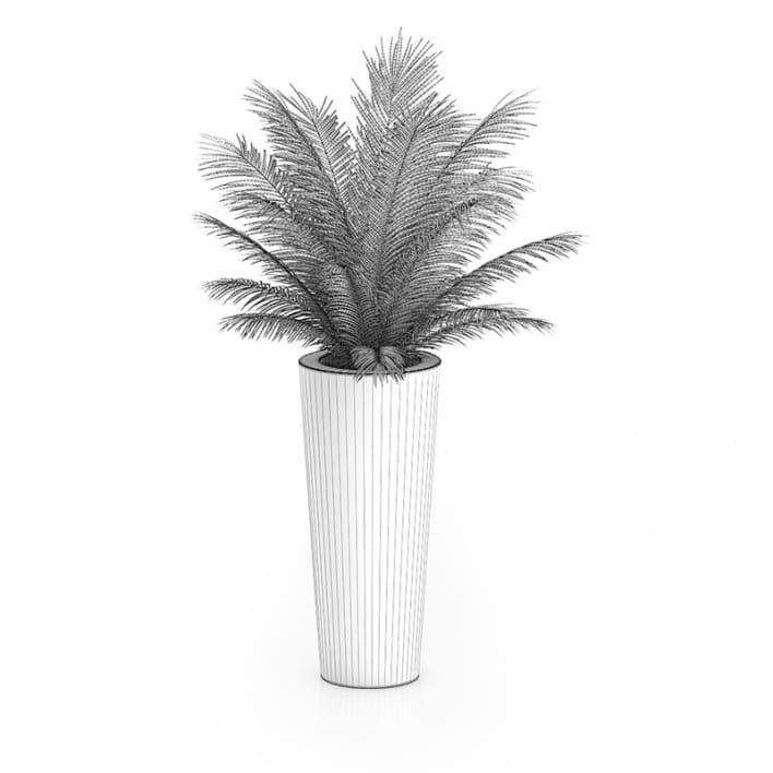 Palm Tree in Round Pot 4