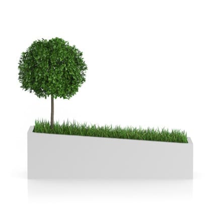 Tree an Grass in Rectangular Planter