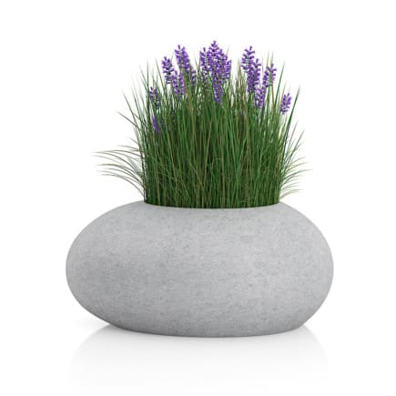 Grass with Flowers in Concrete Pot