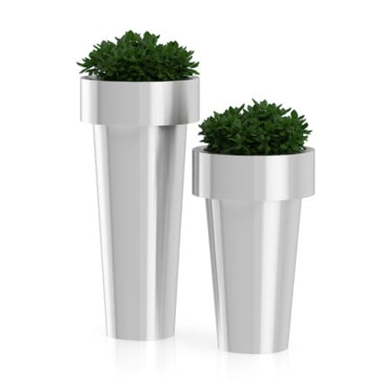 Two Plants in Large Metal Pots