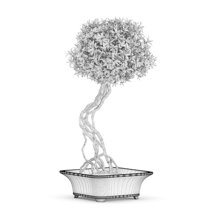 Flowering Tree in Concrete Vase