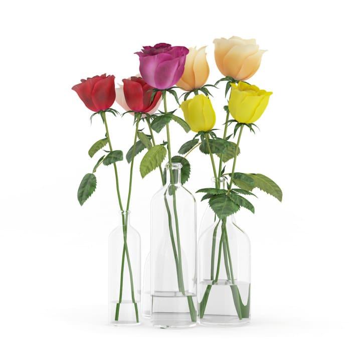 Roses in Glass Vases