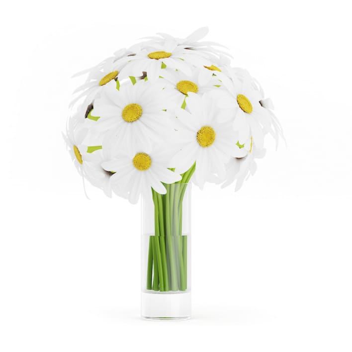 3d Daisies in Glass Vase