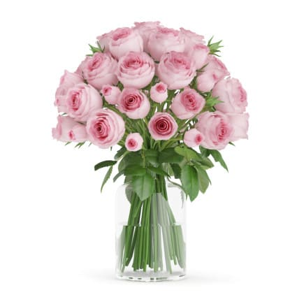 3d Pink Roses in Glass Vase