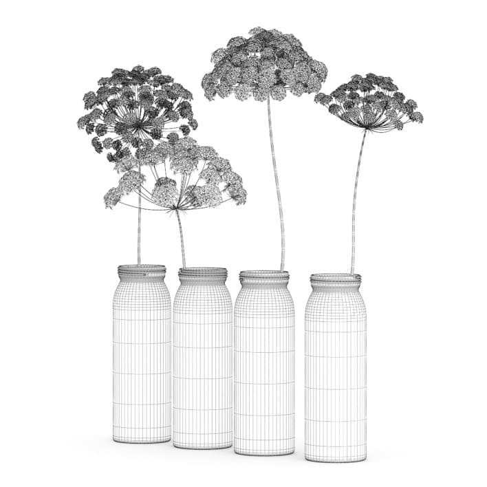 3d Wild Carrot Flowers in Glass Jars