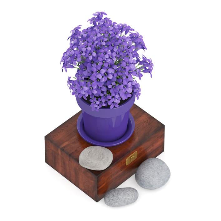3d Purple Flowes on Wooden Box