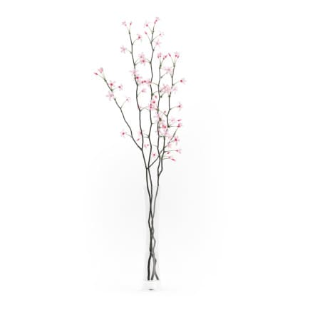 3d Flowering Tree Twigs in Glass Vase