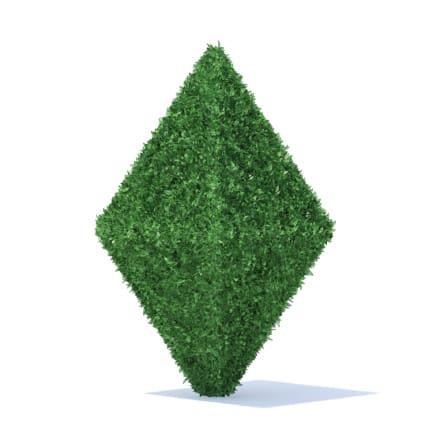 Diamond Shaped Hedge 3D Model