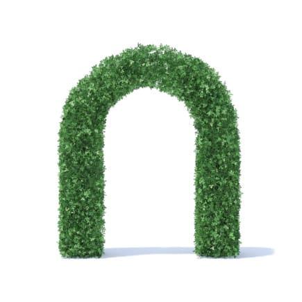 Arc Shaped Hedge 3D Model
