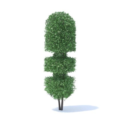 Tall Hedge 3D Model