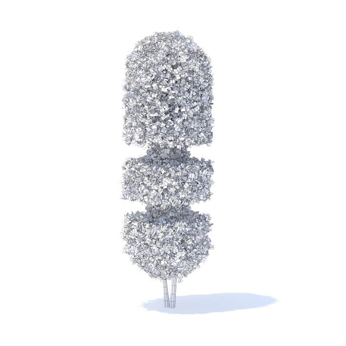 Tall Hedge 3D Model