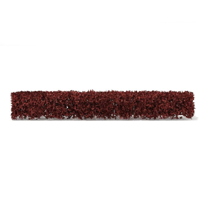 Straight Red Hedge 3D Model