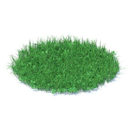 Grass with Clover 3D Model