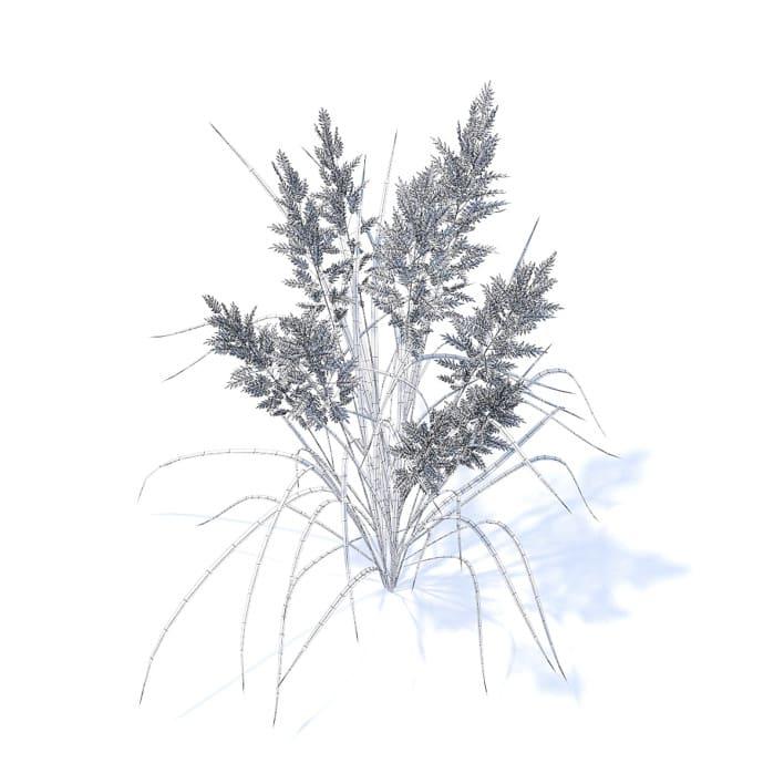 Flowering Grass 3D Model