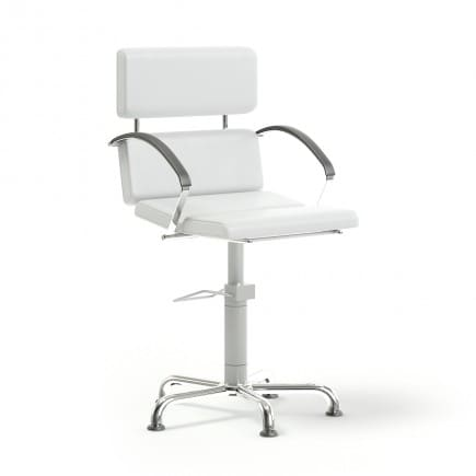 Salon Chair 3D Model