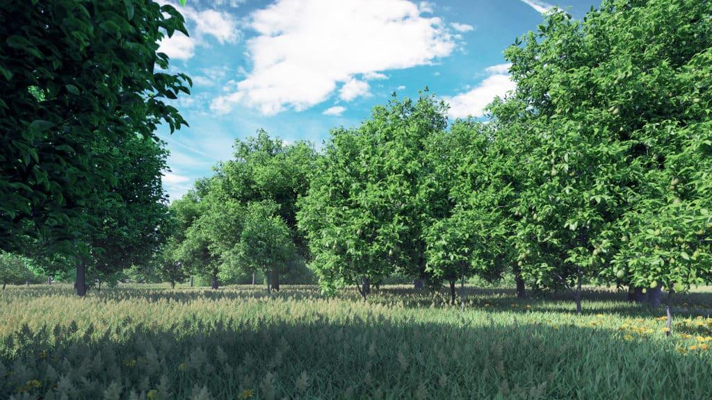 fruit trees 3d models
