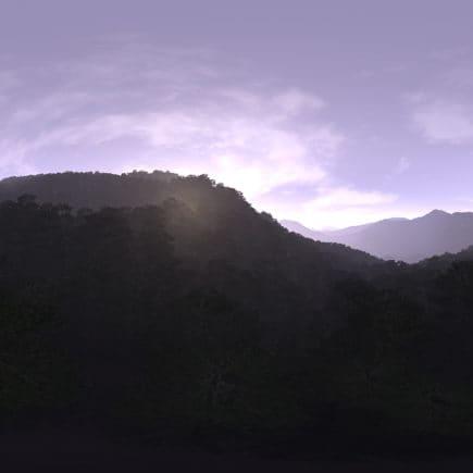 Morning Forest Hills HDRI Sky