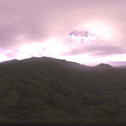 Morning Forest HDRI Sky