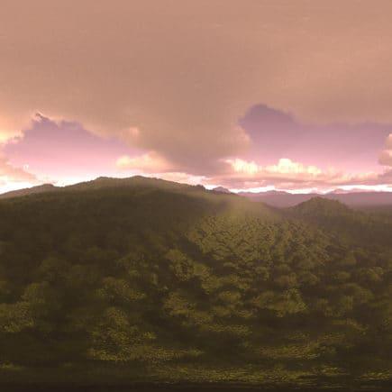 Evening Forest HDRI Sky