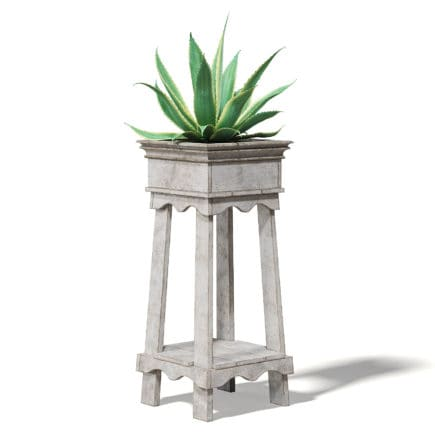 Aloe in Wooden Planter 3D Model
