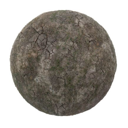 Dry Cracked Dirt with Grass PBR Texture