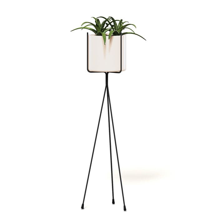 Plant on Tall Rack 3D Model