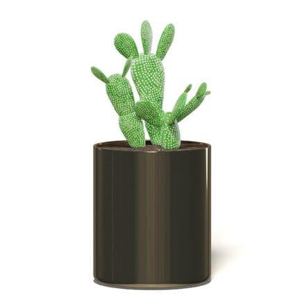 Cactus 3D Model in Metal Pot