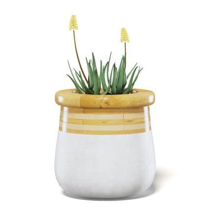 Flowers 3D Model in Large Modern Pot