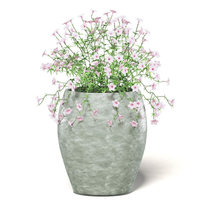 Pink Flowers 3D Model in Ceramic Pot
