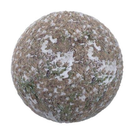 Frozen Grass with Snow PBR Texture